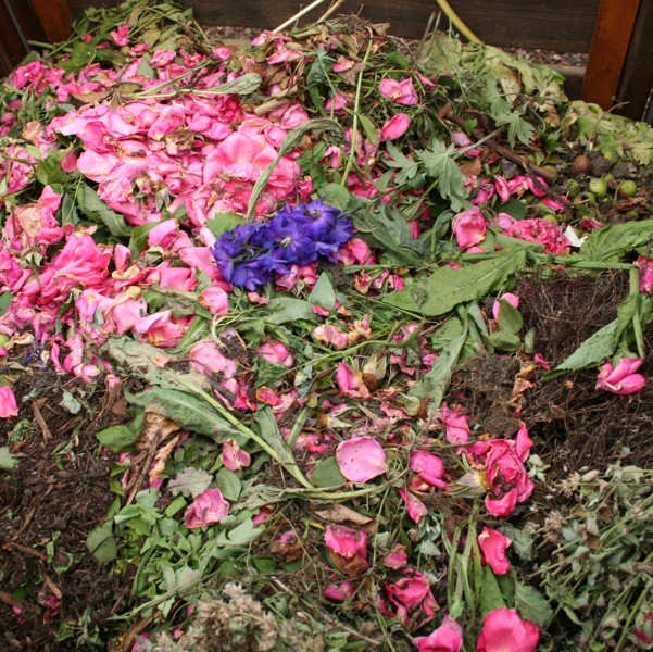Kann Kompostieren krank machen? - www.heimische-wildpflanzen.de
